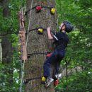 boomklimmen in de Ardennen