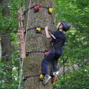monkey klimmen in Vielsalm